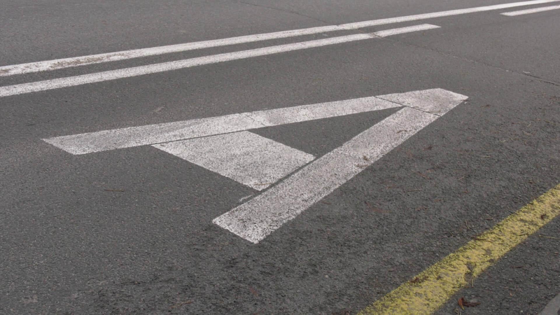 В Москве начнут круглосуточно работать выделенные полосы для такси и общественного транспорта